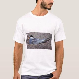 Tern, least (B07N) T-Shirt