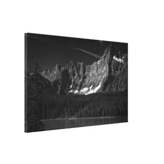 Terra Borealis iv Canvas Print