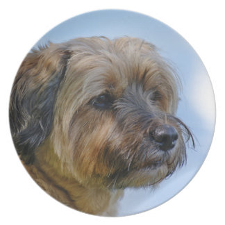 Terrier Design Party Plates