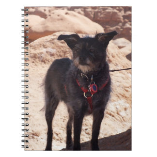 Terrier in the Desert Notebook