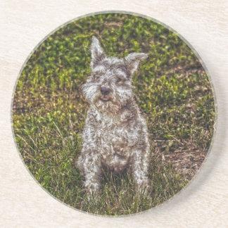 Terrier Schnauzer Pet Dog-lover's Dog Breed Drink Coaster