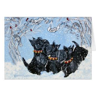 Terriers écossais dans la neige carte