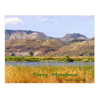 Terry, Montana Postcard