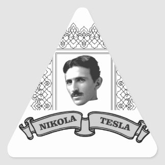 tesla in round triangle sticker