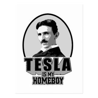 Tesla Is My Homeboy Postcards