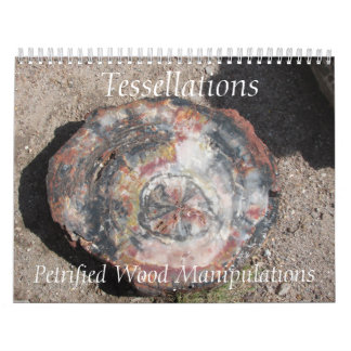 Tessellations - Petrified Wood Manipulations Wall Calendar