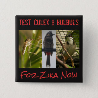 Test Culex & Bulbuls Button by RoseWrites