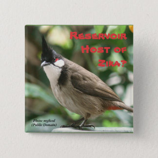 Test Red-Whiskered Bulbuls by RoseWrites 2 Inch Square Button