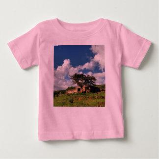 test shirts