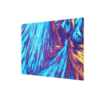 Testosterone crystals canvas print