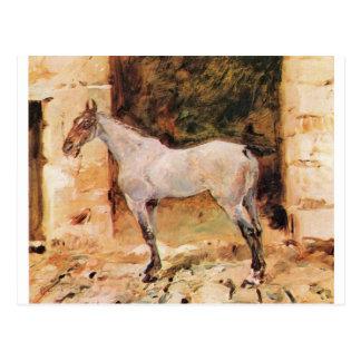 Tethered Horse by Henri de Toulouse-Lautrec Postcard