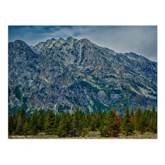 Teton NP 6901 Postcard