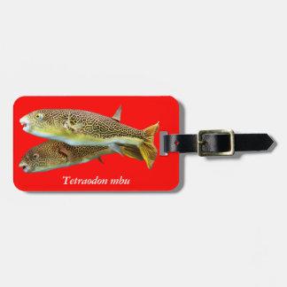 Tetraodon mbu luggage tag