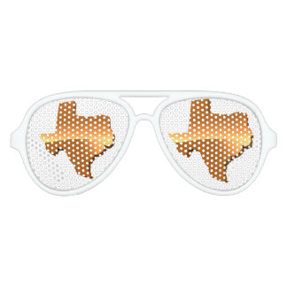 TEXAS 2 AVIATOR SUNGLASSES