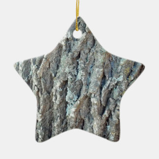 Texas Ash Tree Ceramic Star Ornament