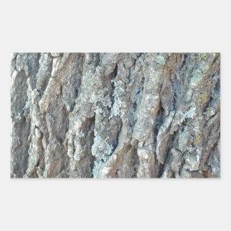 Texas Ash Tree Sticker