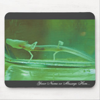 Texas Blind Salamander Mouse Pad
