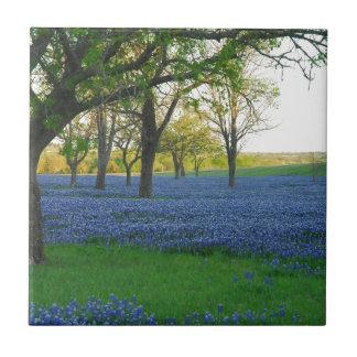 Texas Blue Bonnets Ceramic Tiles