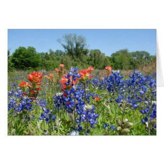 Texas Bluebonnet & Paintbrush Notecard