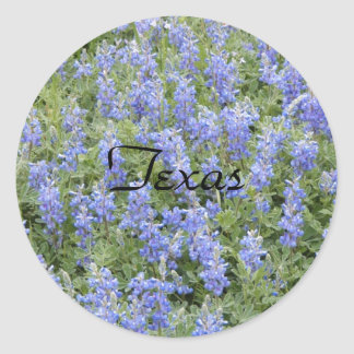 Texas bluebonnet sticker