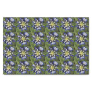 Texas Bluebonnet Tissue Paper