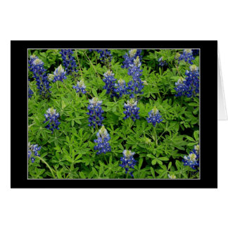 """Texas Bluebonnets"" Card"