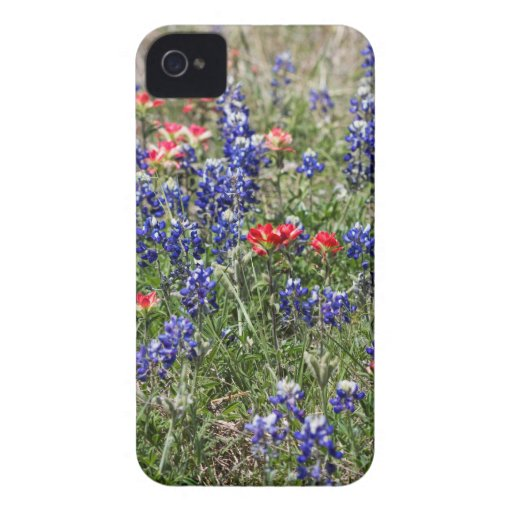 Texas Bluebonnets & Indian Paintbrush Wildflowers Case-Mate iPhone 4 Case