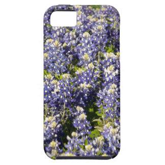 Texas Bluebonnets iPhone 5 Case