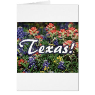 Texas Bluebonnets Paintbrushes Card