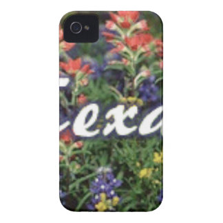 Texas Bluebonnets Paintbrushes Case-Mate iPhone 4 Cases