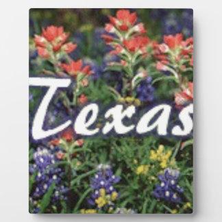 Texas Bluebonnets Paintbrushes Plaque
