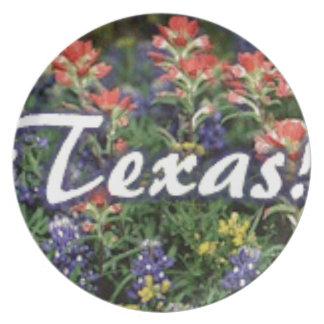 Texas Bluebonnets Paintbrushes Plate