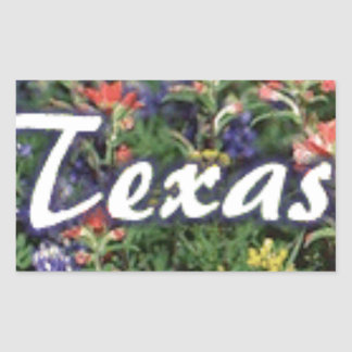 Texas Bluebonnets Paintbrushes Sticker