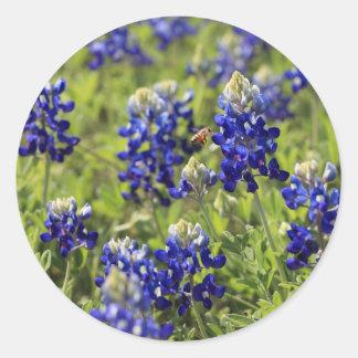 Texas Bluebonnets Sticker