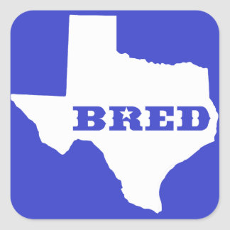 Texas Bred Square Sticker