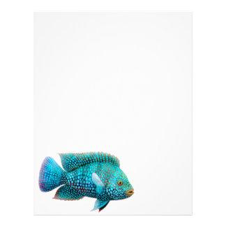 Texas Cichlid Fish Letterhead