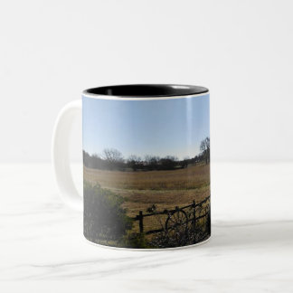 Texas country mug