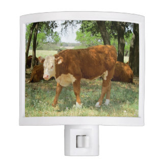 Texas Cow-Nature Scene Night Lites