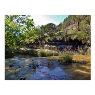 Texas Creek Swimming Hole Postcard