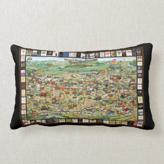 Texas Hill Country Wineries Map Pillow Home Decor
