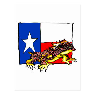 TEXAS HORNED TOAD POSTCARD