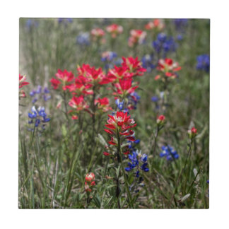 Texas Indian Paintbrush and Bluebonnet Wildflowers Tile
