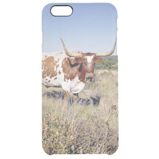 Texas Longhorn Breed (photo) Clear iPhone 6 Plus Case