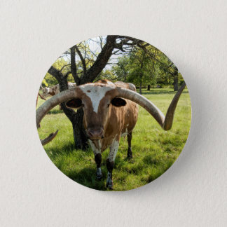 Texas Longhorn Bull 2 Inch Round Button