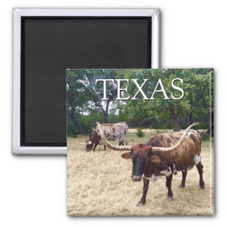 Texas Longhorns Square Magnet