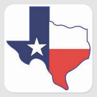 TEXAS MAP SQUARE STICKER