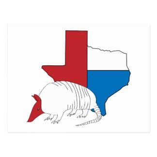 Texas Pride Armadillo Postcard