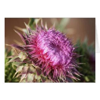 Texas Purple Thistle Greeting Card