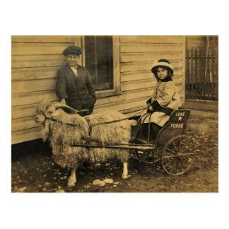 Texas Ride Postcard