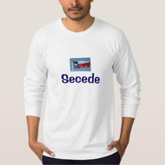 TEXAS Secede w/flag T-Shirt